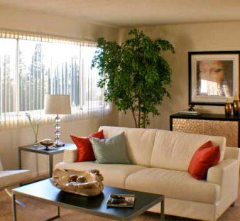 iop-living-room