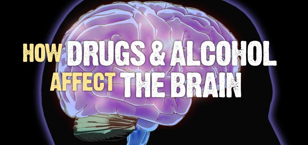 alcoholism dugs affect brain function