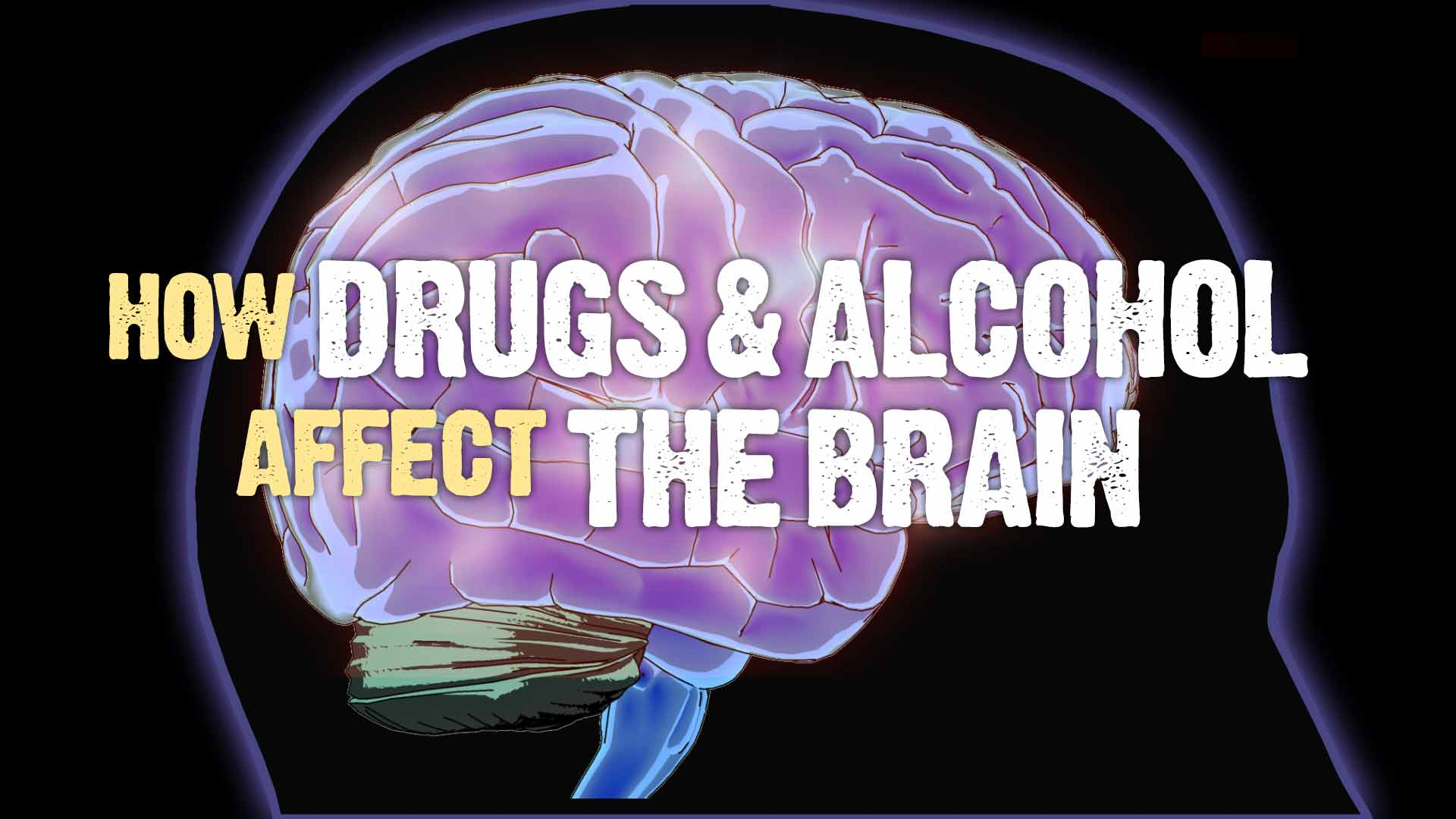 How Drugs And Alcohol Affect The Brain