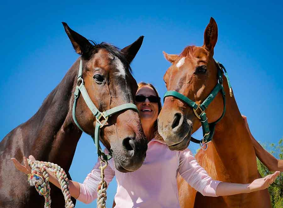 horse therapy drug addiction alcoholiam