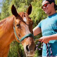 equine-therapy-alex