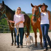equine-therapy-drug-rehab-tracy