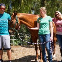 equine-therapy-ventura-recovery-center-group