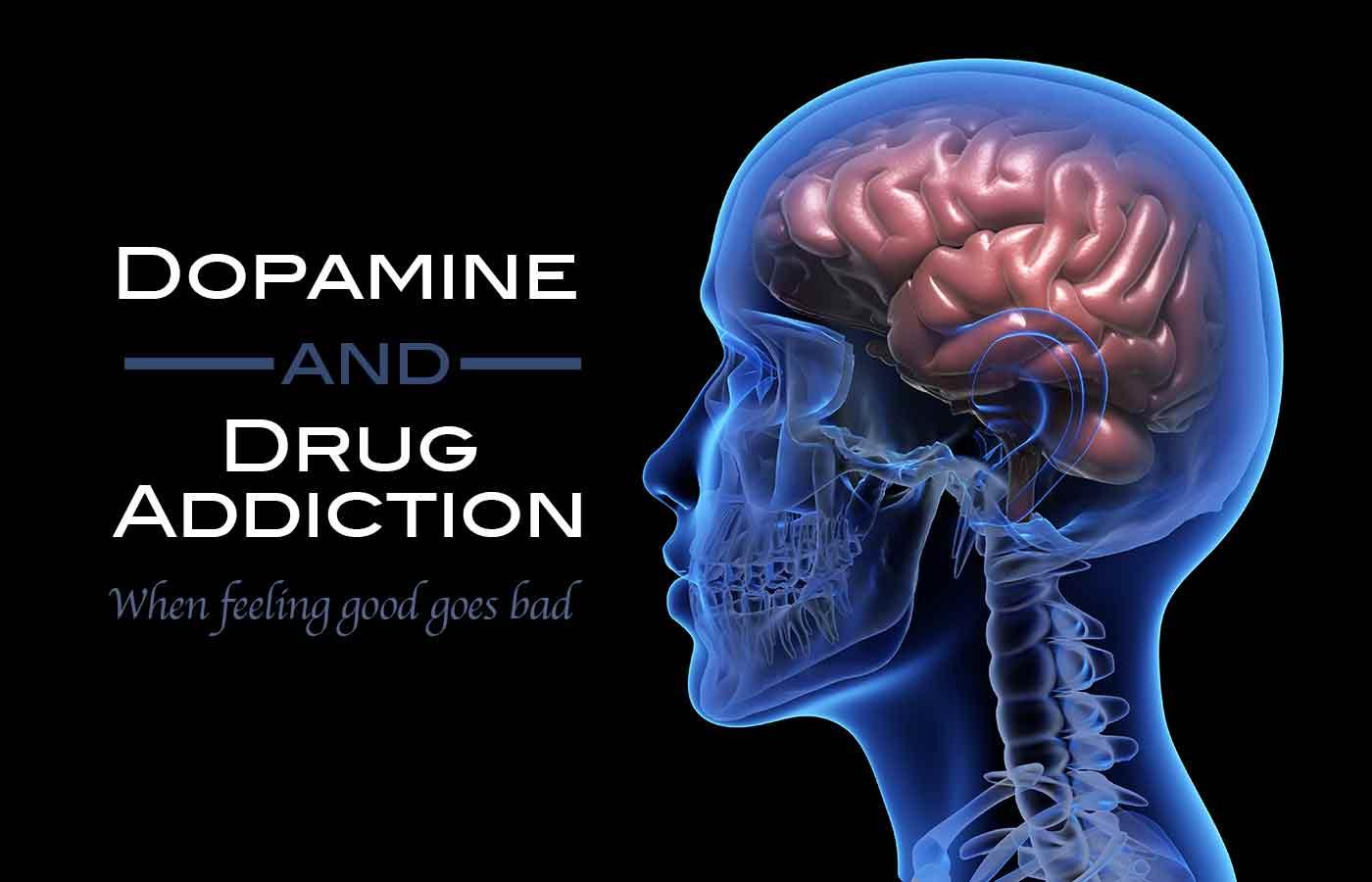 Dopamine and Drug Addiction